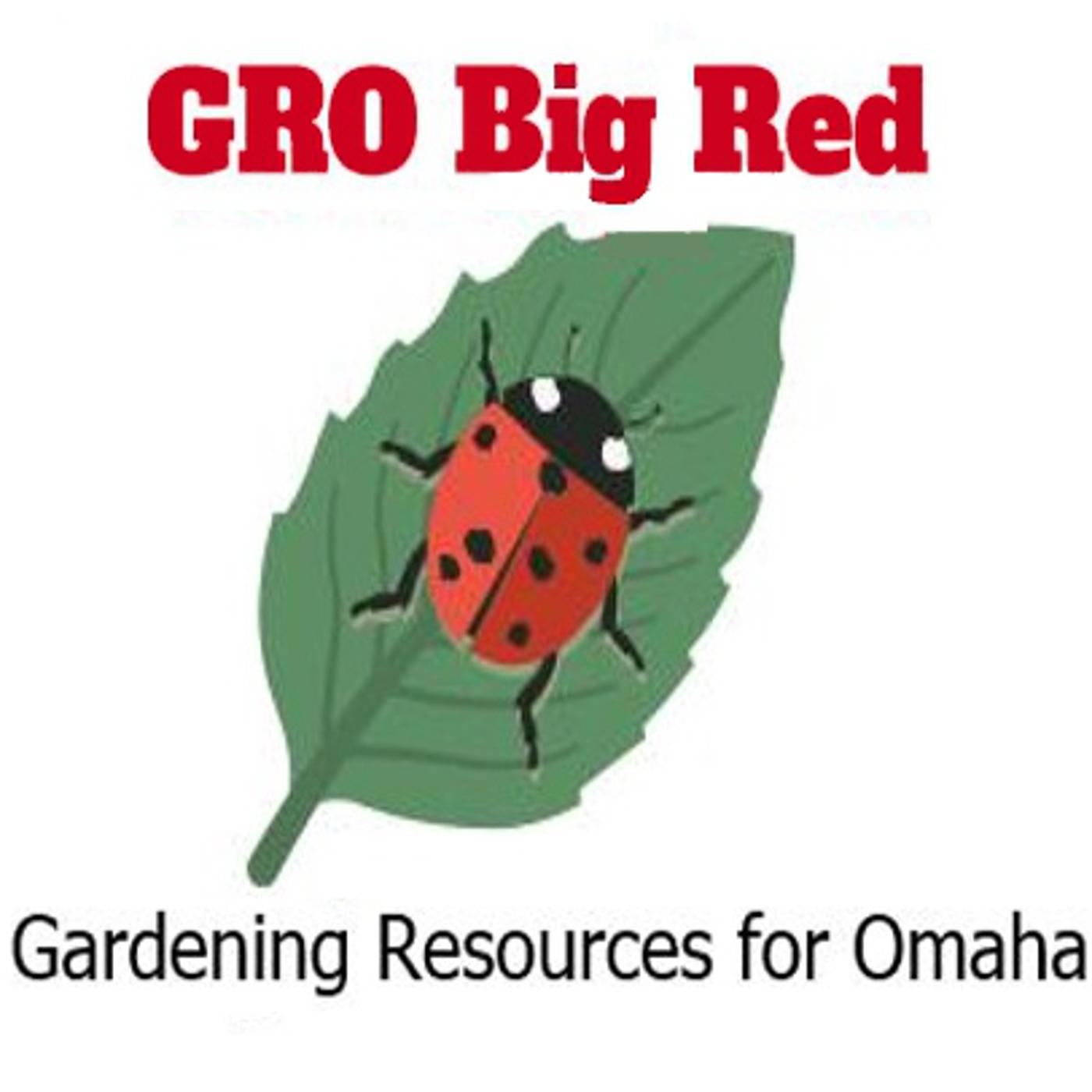 GRO Big Red